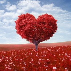 Red tree shaped like heart in a red field with blue sky and clouds